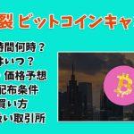 ビットコインキャンディ(CDY) 分裂は日本時間 何時?上場はいつ?特徴・価格予想!配布条件・付与条件!購入方法・買い方・取引所 コインチェック、バイナンスは?【ハードフォーク】
