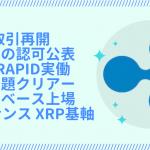 リップル(XRP) 高騰の好材料(ファンダメンタルズ)!価格が上がる要素!上がるタイミング!【2019年〜2020年】